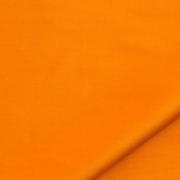 Dazzle | Pumpkin